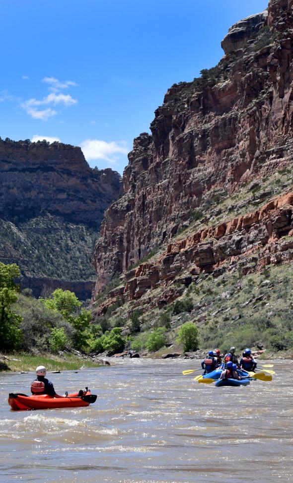 Yampa River Rafting Adrift Dinosaur Utah Colorado